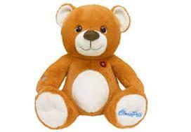 Hacked Teddy Bear